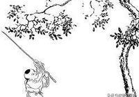 少年王小智娶嬌妻