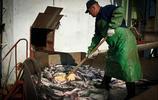 俄羅斯抓鮭魚的人,一肚子的魚子醬