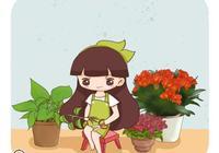 出現這4種情況,植物離爛根不遠了,及時處理