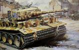 彩繪&模型封繪中的各種二戰德國虎式坦克彩圖(無水印版)