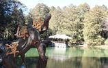 旅遊圖集 廈門南普陀寺 很乾淨清雅人也好風景也不錯,值得一遊