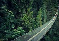 趣味測試:你不敢走哪條吊橋?測你人生在什麼時候會遇到轉折點