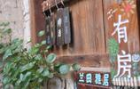 老巷子裡的銅錢草