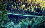 阿爾山地質旅遊景區,秋色盎然,風景如畫,必須要去看看!