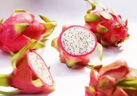 紅心火龍果和白心火龍果的區別是什麼?