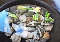 花蛤蜊什麼時候最肥 花蛤蜊怎麼挑選