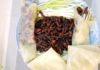 京醬肉絲餅皮卷