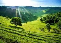 詩人的草原—陝西關山草原