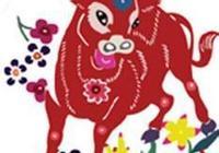 最適合生肖牛的生肖?生肖牛的最佳屬相?
