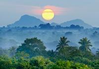 中國唯一熱帶雨林——西雙版納熱帶雨林自然保護區