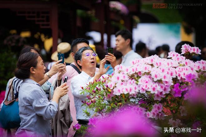 為何這景區全是老年遊客,很少有年輕人身影,門票價格成為了關鍵