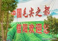 源於武漢的信陽熱乾麵,不僅變河南名吃,還登上熱搜叫板武漢