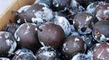 老家一種黑色的梨:買上一斤可以吃上一兩年,南方人一般接受不了