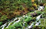美景圖集:新疆-天山天池