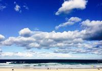 悉尼海岸之旅:細數悉尼八大特色海灘