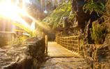 旅途中的風景:上海科技館與東方明珠相望帶你領略不一樣的風光
