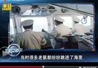 航空母艦上的老鼠是怎麼上去的?