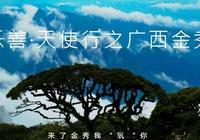 """這裡被稱為中國天然氧吧第一縣來金秀我""""氧""""你"""