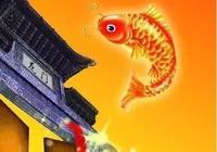 錦鯉魚,做為觀賞魚有哪四個優點?