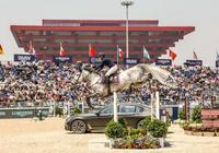 上海環球馬術冠軍賽難度加大,但騎手和馬兒配合完美,讓人讚歎