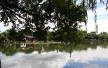 這麼美的西湖,你去了嗎?