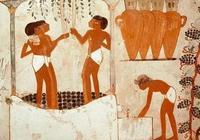 朱衛東:一篇文章看懂葡萄酒發展歷史
