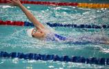 游泳——全國夏季游泳錦標賽開賽