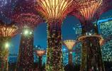 「新加坡系列」讓人又愛又恨的新加坡