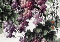 程勝武畫的葡萄真是有滋有味,直接吃都行
