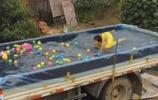 實拍:酷暑天農村爸爸為孩子建的車載游泳池,網友看了直呼有創意