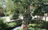 遊走在烏茲別克斯坦,看他們如何將粗糙樹皮變成柔軟的紙