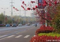 鄂州最漂亮的一條公路是哪一條看了就知道