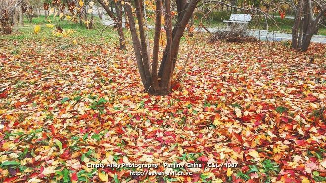 圖蟲風光攝影:秋景