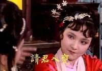 薛寶琴如此受賈母喜愛,為何卻遭到婆家嫌棄?