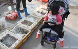 青島市民扎堆漁港淘海鮮,金秋海捕正當時魚蝦蟹新鮮便宜抓緊吃