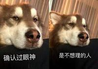 單身狗聽了就想笑的情侶對話,哈哈哈哈……