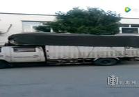 肇州來了偷小孩的貨車?大媽隨手拍視頻造謠被拘5日