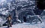 冰河時代的小霸主,殘存到現在又將是一個萬獸之王