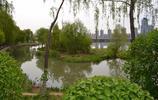 瀋陽市最大的城市濱河公園,瀋陽五里河公園!