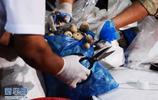 烏茲別克斯坦集中銷燬逾2噸毒品