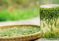 黃山毛峰屬於什麼茶呢?