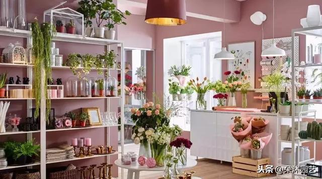 俊男靚女齊聚《小姐姐的花店》,追完劇想開店的看這裡!