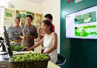 自己如果不會電商,該怎麼把家裡的農產品賣出去?看完你就知道了