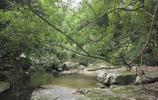 瓊中森林野溪谷一日遊