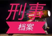 刑事檔案009:華城連環殺人案