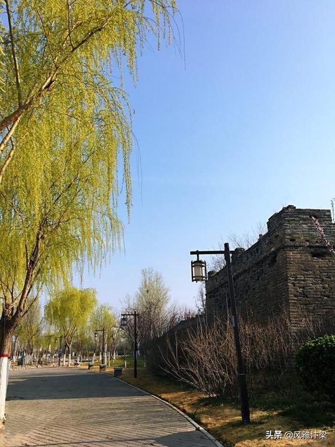 河南開封:城牆公園花開正盛,古城人民遊春踏青的好去處。