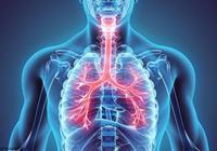 支氣管炎反覆發作,按摩4個穴位順氣止咳