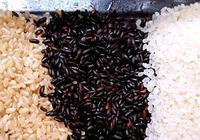 五穀雜糧粉吃了會提升血糖?