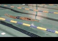 學習蝶泳的關鍵是?