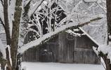 這幾大國的美麗雪景